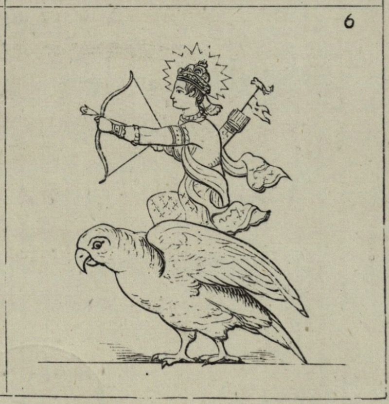 Kamadeva riding on his parakeet